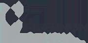 Platinum Dental Logo